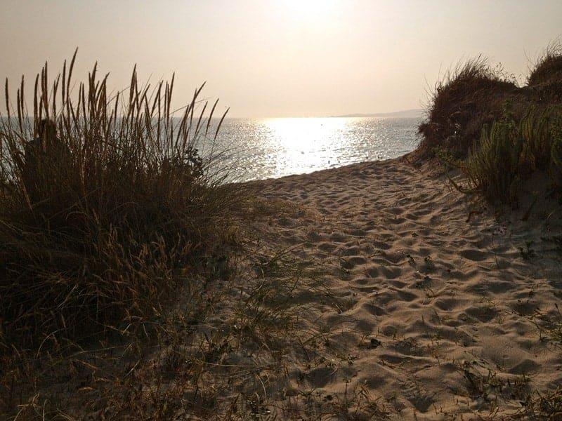 Ruta polo Salnés